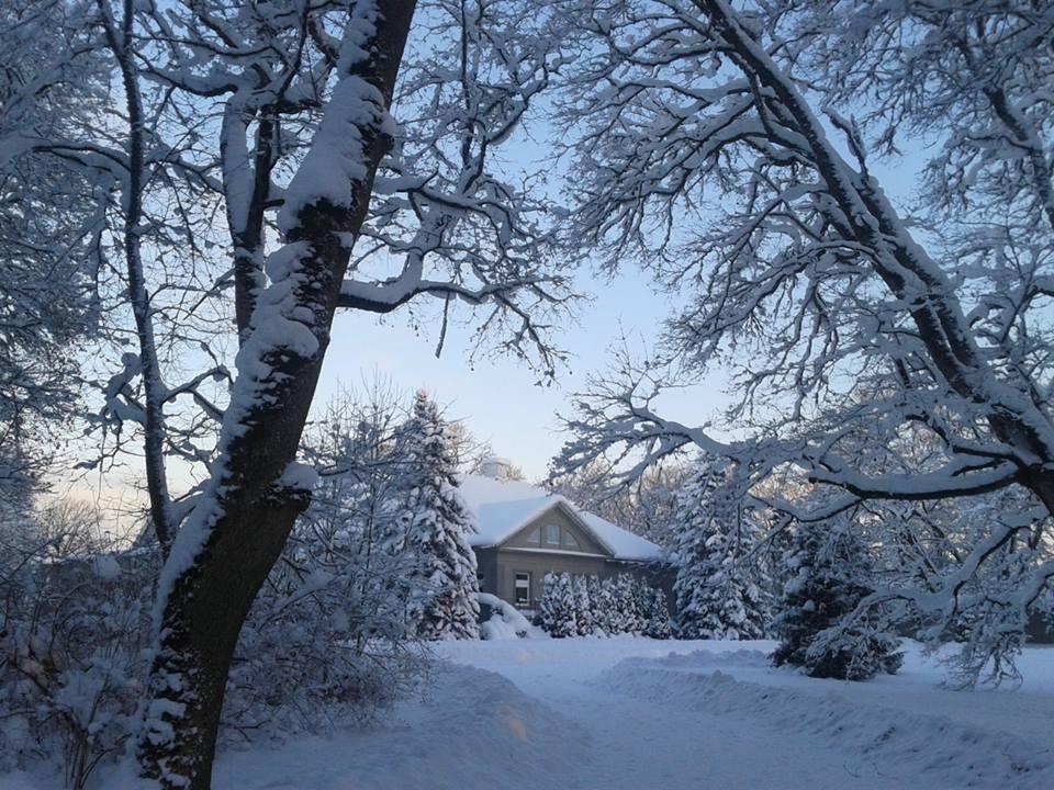 Essu Mõisa peahoone paistab talvel puude vahelt